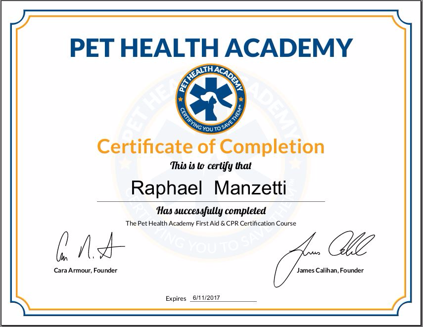 Pet Angels Santa Barbara First Aid Cpr Certificate